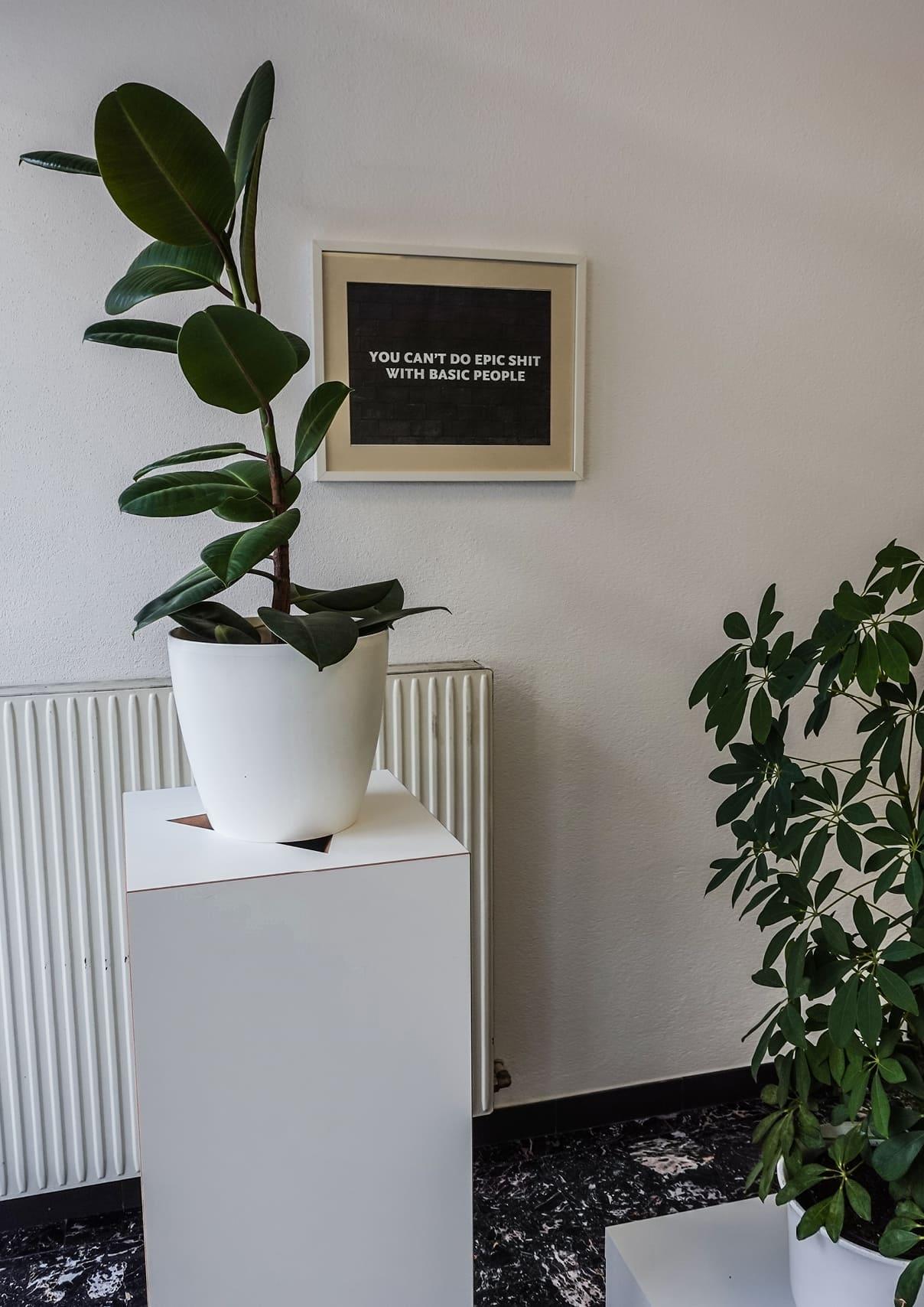 be-oh Marketing nachhaltige Agentur